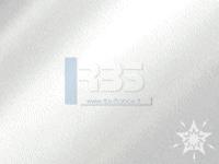 Vernis sélectif brillant  320mm